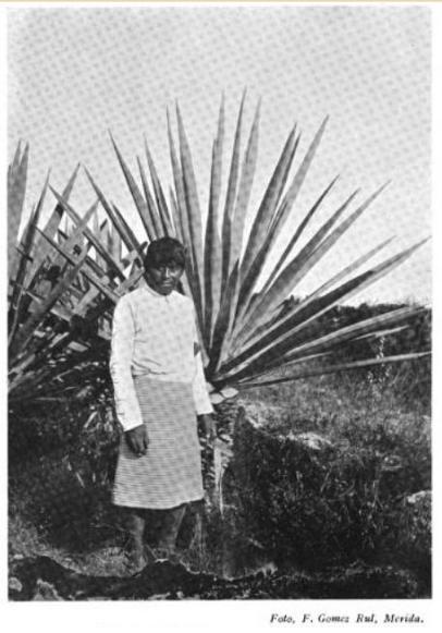 La reforma agraria de Cárdenas en Yucatán (1935-1940)